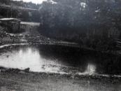 3 Dorfweiher Ettelscheid, Smlg. Miro Honhoff